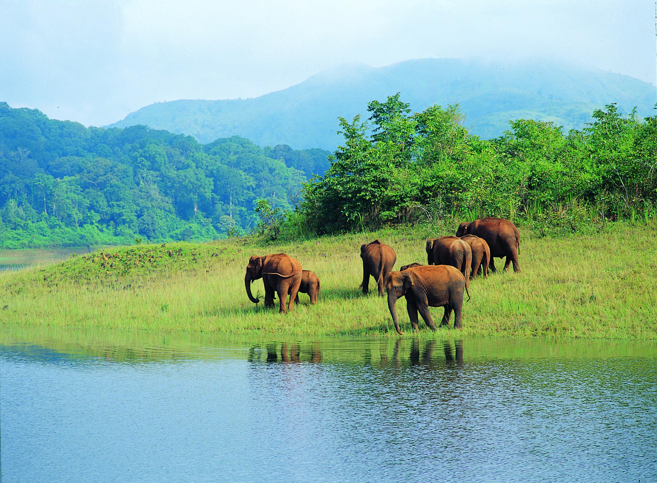 Kerala & Lakshadweep & Maldives